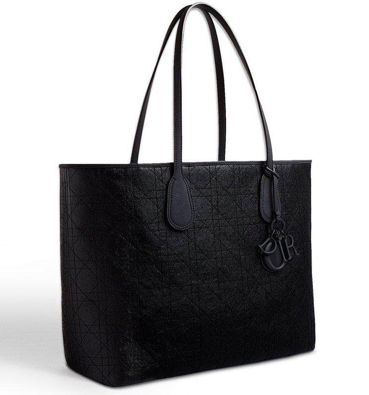 4e1fd38c6f23 Dior Handbags Price List India
