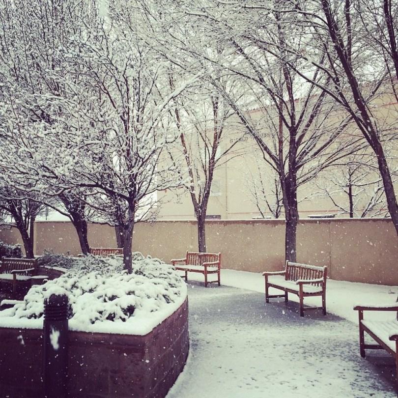 snow-las-cruces12