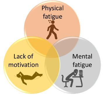 Role Inflammation Fatigue Figure 1