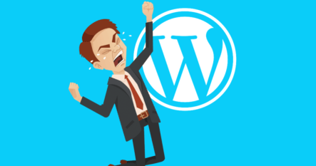 WordPress Suspends Astra Theme For Violating WordPress Rules