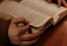 8 Bible Verses That Speaks About Sunday