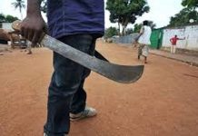 5 Killed In Cults Clash In Bayelsa