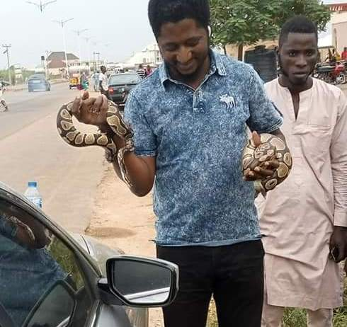 See Photos As A Nigerian Got Bitten By His Snake Pet