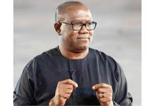 Allow Some Region-Like State Security System To Function - Peter Obi Tells Federal Govt