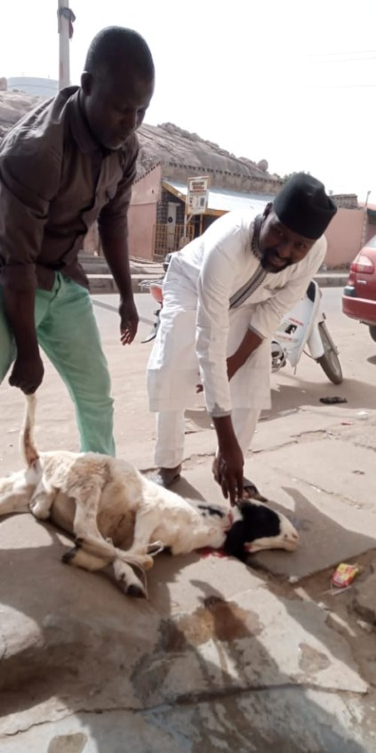Man Throws Ram Party To Celebrate President Buhari's Return From UK Medical Trip In Katsina State