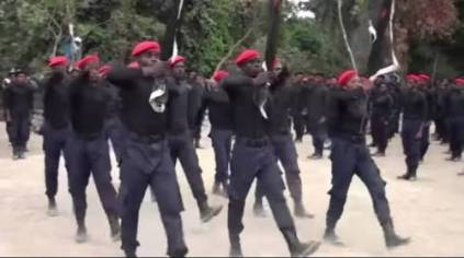 IPOB Fighters Enforce Ban On Open Grazing, Shoot Cows On Sight In Delta