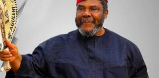 Pete Edochie Tells Igbo People To Shun Northern Cattle For Local Cows