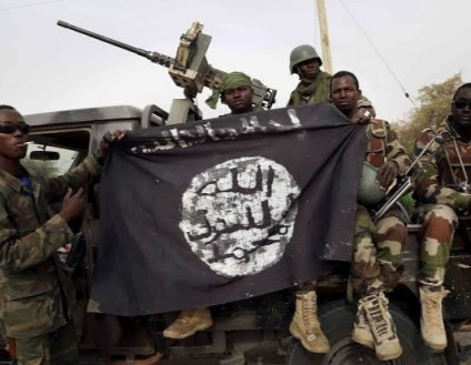 Boko Haram Takes Over 500 Communities In Niger State - Local Govt Chairman