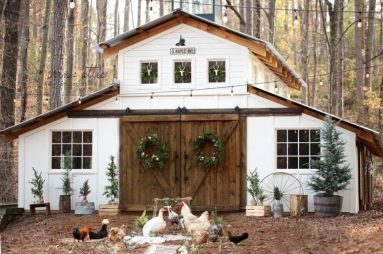 Woman Fixes Wedding Ceremony For 2 Chickens