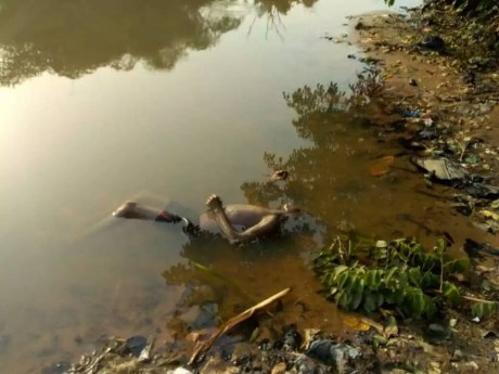 Unidentified Corpse Of Man Found Floating On River Osun