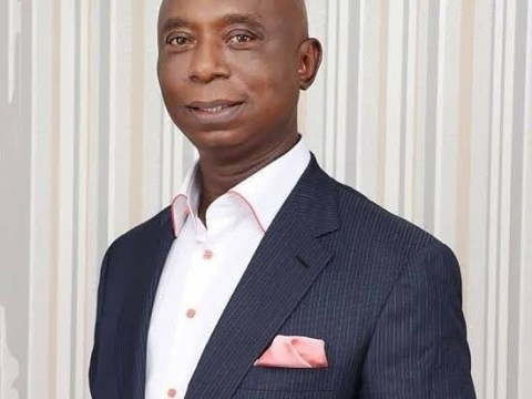 Court Sacks Ned Nwoko As PDP Senator-elect