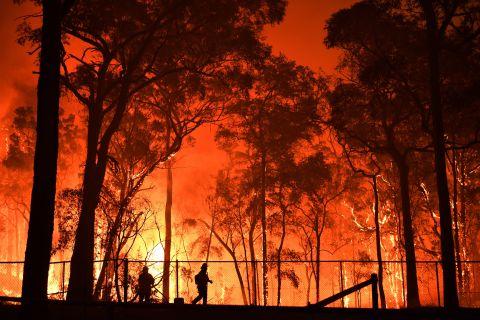 Australia Bushfires Kills Millions Of Animals