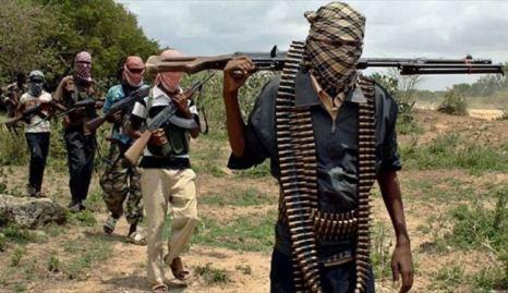 After 5 Years Of Fighting Military, Boko Haram Terrorist Surrenders