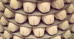 This Will Make You Smarter: 151 Big Thinkers Each Pick a Concept to Enhance Your Cognitive Toolkit