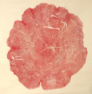 Woodcut: A Meditation on Time Through the Inked Cross-Sections of Fallen Trees