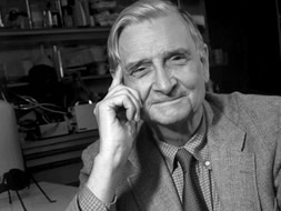 sociobiologist eo wilson regarded as one of the greatest scientists alive offers a taste of his forthcoming book letters to a young scientist