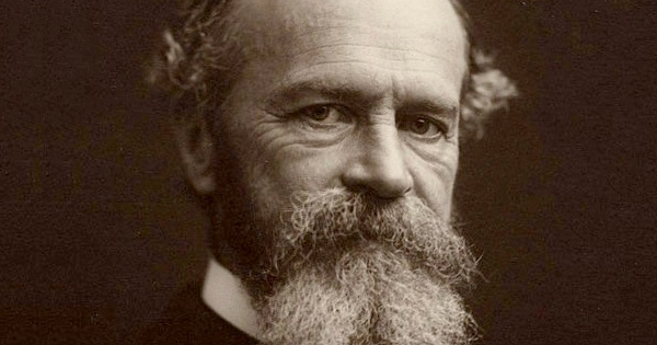 habit essay by william james Rules of breaking bad habits essay # nature of habit: essay on a habit | psychology william james gives four laws of formation of habits.