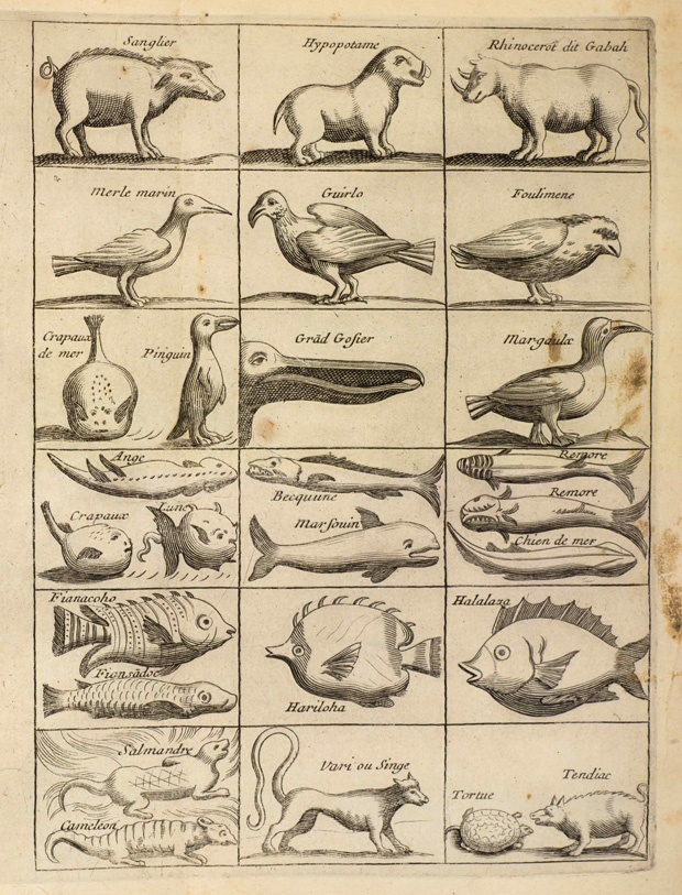 natural histories 500 years of rare scientific illustrations from