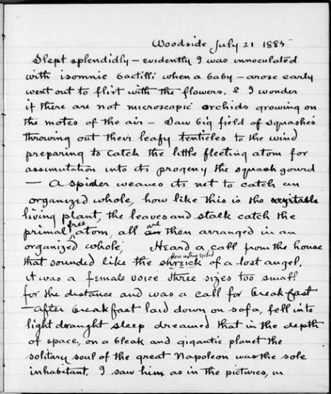 Thomas edison essay
