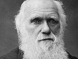 Darwin's Daily Routine
