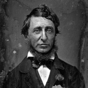Thoreau on Why Not to Quote Thoreau