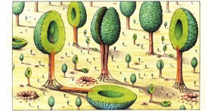 Codex Seraphinianus: History's Most Bizarre and Beautiful Encyclopedia, Brought Back to Life