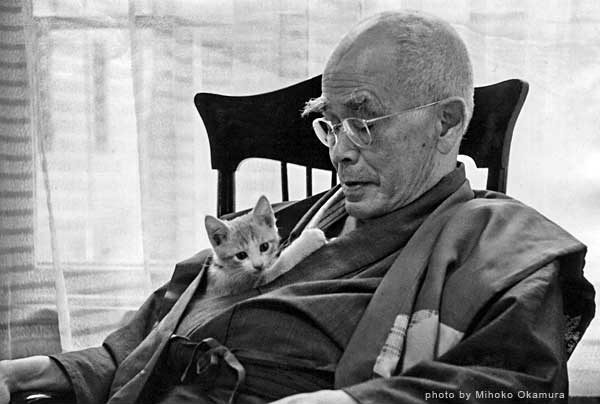 buddhism complete d essay in suzuki t works zen Essays in zen buddhism d t suzuki (the complete works of d t suzuki) suzuki the boundless open sea a collection of essays: zen buddhism and critical.