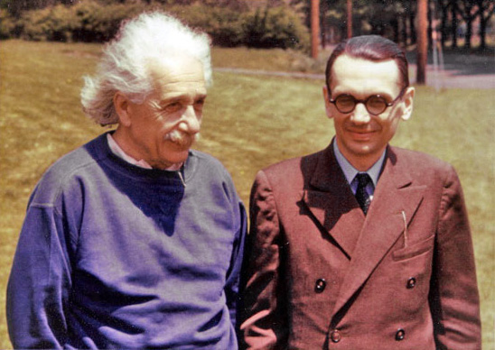 Image result for godel einstein