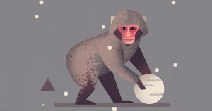 Mad About Monkeys: A Loving Illustrated Encyclopedia of Weird and Wonderful Kindred Creatures