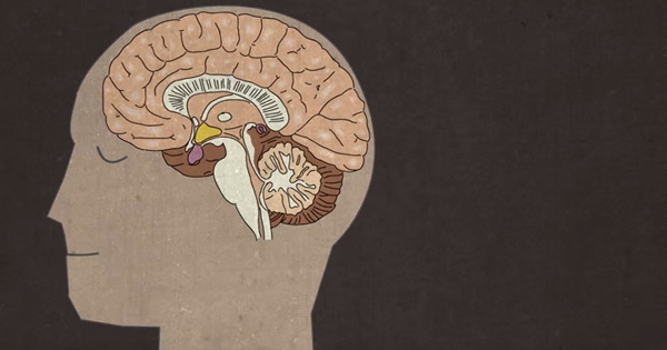 """What the Science of """"Sleep Paralysis"""" Reveals About How the Brain"""