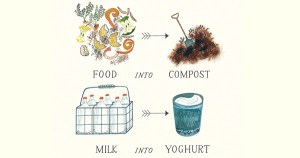 Tiny Creatures: The Marvelous World of Microbes, in an Illustrated Children's Book