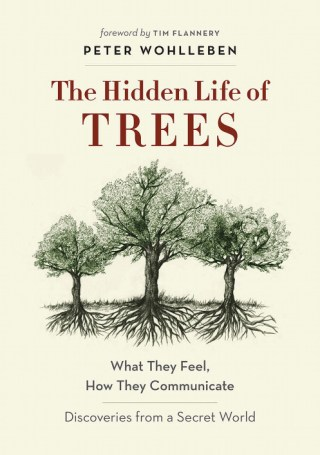 039fbbf7b52 The Secret Life of Trees  The Astonishing Science of What Trees Feel and  How They