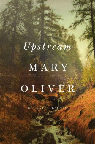 Staying Alive: Mary Oliver on How Books Saved Her Life and Why the Passion for Work Is the Greatest Antidote to Pain