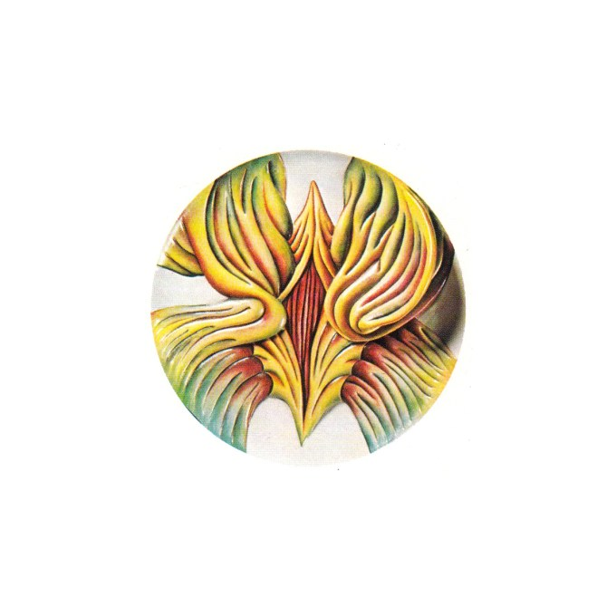 Mary Wollstonecraft plate (Judy Chicago, The Dinner Party, 1979)