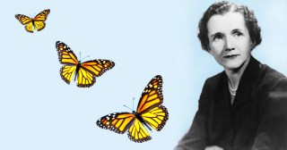 Rachel Carson's Touching Farewell to Her Dearest Friend and Beloved