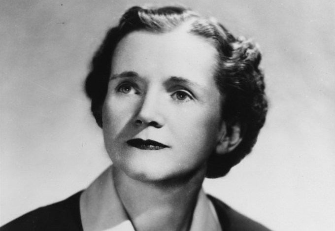 a bioluminescent wonder rachel carson on the art of illuminating rachel carson