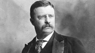 Theodore Roosevelt on the Cowardice of Cynicism and the Courage to Create Rather Than Tear Down