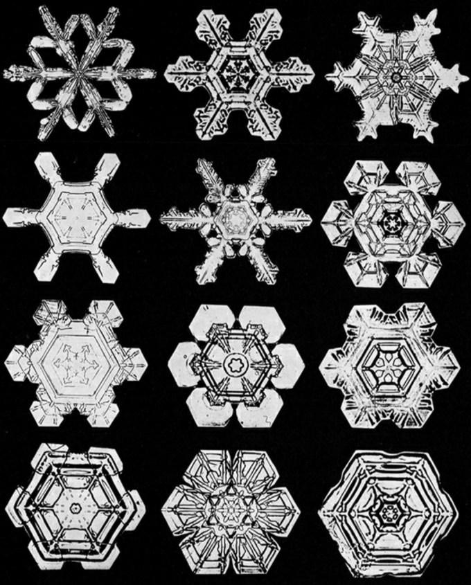 wilsonbentley_snowflakes17.jpg?resize=680%2C845