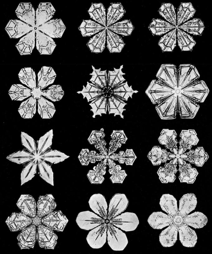 wilsonbentley_snowflakes19.jpg?resize=680%2C814