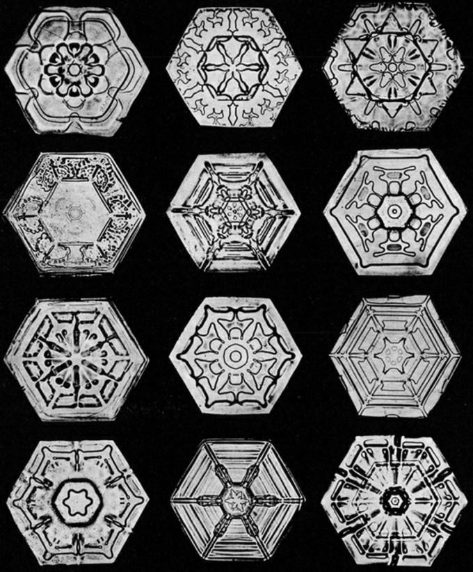 wilsonbentley_snowflakes2.jpg?resize=680%2C823