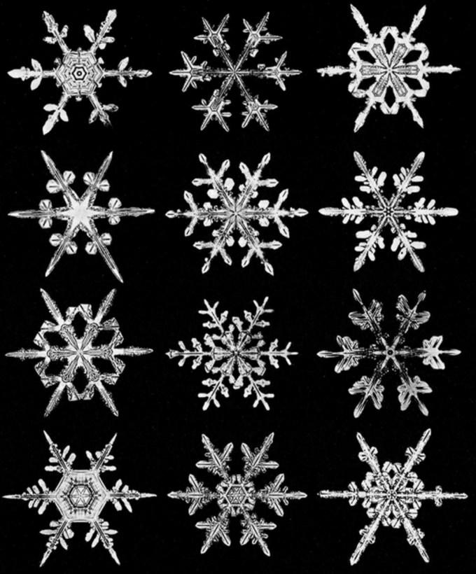 wilsonbentley_snowflakes22.jpg?resize=680%2C820