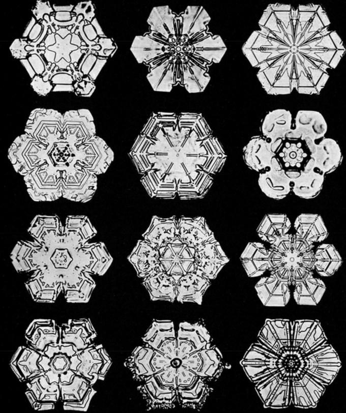 wilsonbentley_snowflakes7.jpg?resize=680%2C812