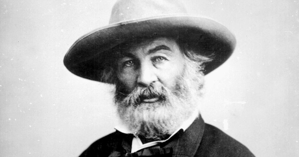 The Body Politic Electric: Walt Whitman on Women's Midpoint to Democracy