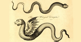 Snakes, Dragons, and the Power of Music: Strange and Wondrous 18th-Century Illustrations of Real and Mythic Serpents
