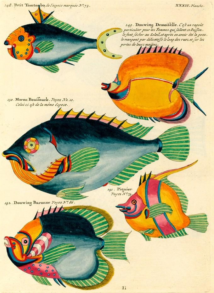 renard_fish52.jpg?resize=680%2C933