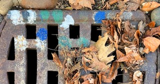 Dotspotting Expressionist Science: What the Mysterious Color-Markings on Storm Drains Have to Do with Rachel Carson's Legacy and the War on a Deadly Virus