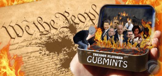 Gubmints-Banner1