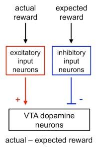 dopamine RPE circuit model