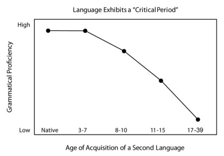 critical period language learning