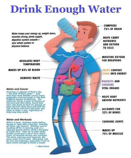 Drink Enough Water